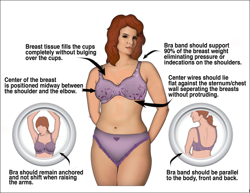 Internet Helps Women Find the Perfect Bra